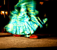 Flamenco dancer, 2008